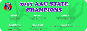 2017 AAU Florida State Gymnastics Champs