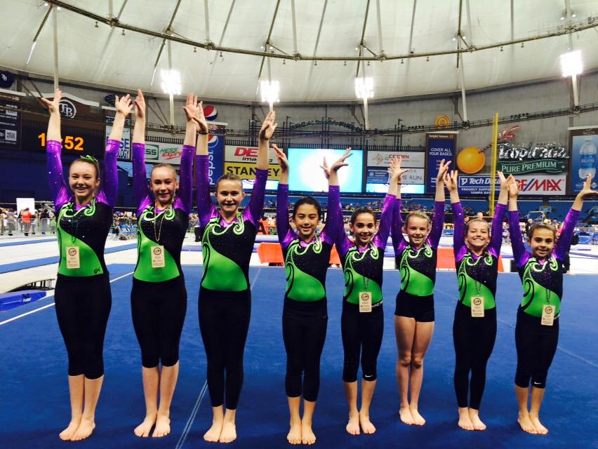 Gymnastics Team Programs